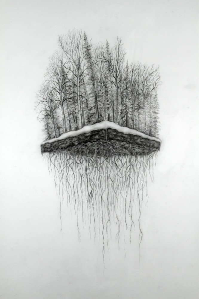 06_J.Pena, Deforested