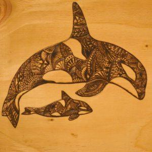 Orcas, Katie Allen