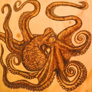Octopus, Katie Allen