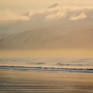 Striped Beach, Susan Johnson