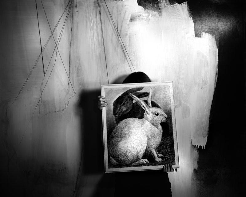 Black&White Rabbits 2008