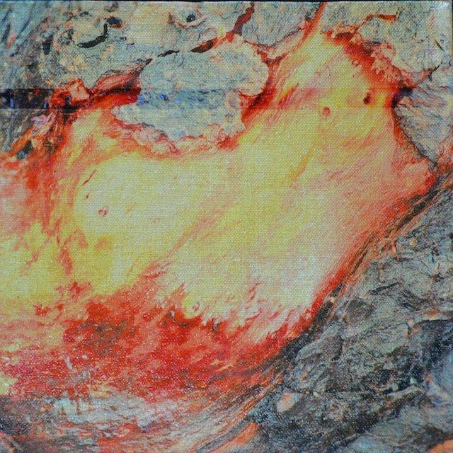 Driftwood II By Annekathrin Hansen