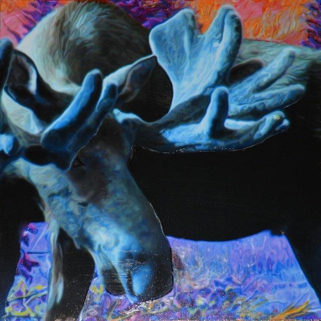 Blue Moose By Marali