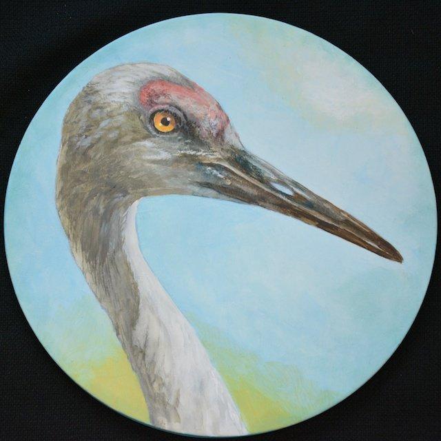 Sandhill Crane By Wanda Seamster