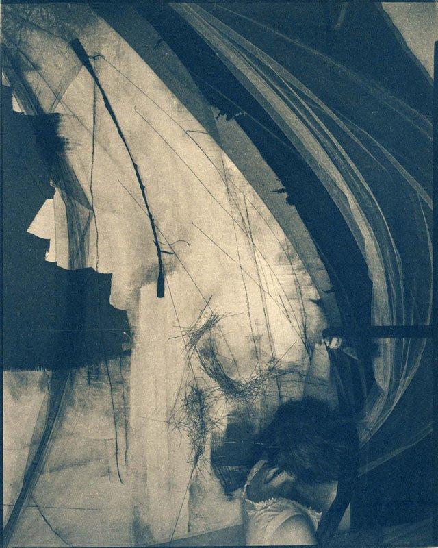 Velvet Cyanotype 2015 Bunnell