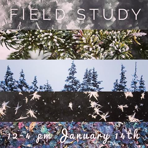 Field Study, Saturday 12-4 With Mandy Bernard